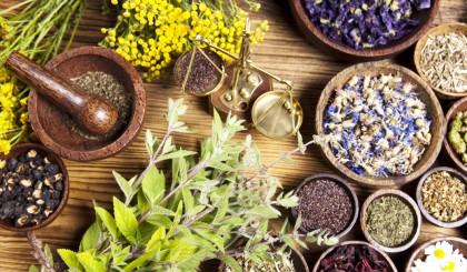remediile naturale