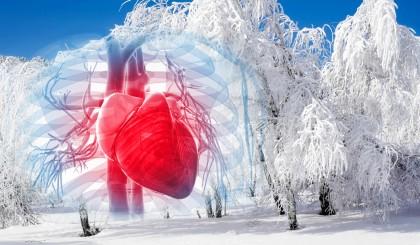 sist cardiovascular iarna